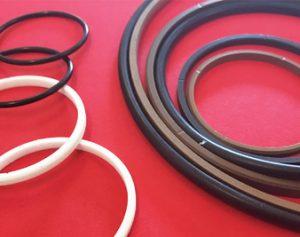 PTFE piston seals 300x237 - PTFE Manufacturers